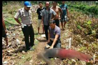 Seorang Warga Inhil Diduga Jadi Korban Pembunuhan