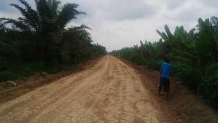 Kurang Perhatian, Masyarakat Desa Sialang Dua Dahan Lakukan Pengerasan Jalan Secara Swadaya