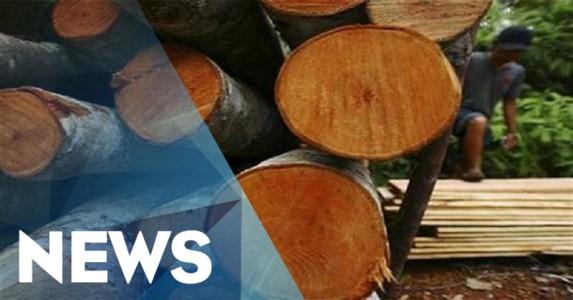 Tiga PNS Kehutanan Riau Ditangkap Tim Saber Pungli Polda Riau