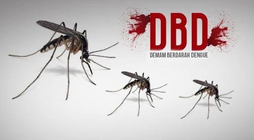 2016, RSUD Puri Husada Tangani 199 Kasus DBD