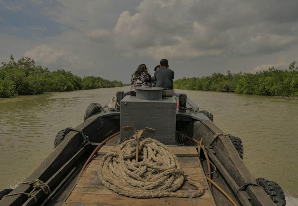 BRGM Targetkan Restorasi Gambut dan Mangrove 21 Ribu Hektare di Riau