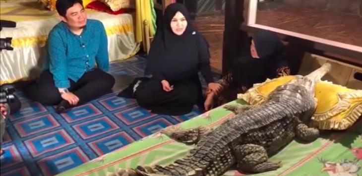 Wanita Melahirkan Buaya dan Manusia di Jambi, Kawin Sama Ular