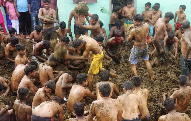 Banyak Warga India Yakini Kotoran Sapi Bisa Sembuhkan Covid-19, ini Kata Dokter
