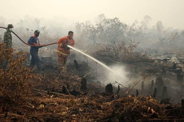 Polda Riau Tahan 19 Tersangka Kasus Karhutla